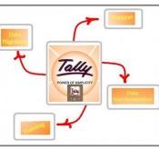 tally-9